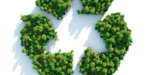Logo du recyclage